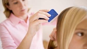 علاج القمل عند الأطفال والمرأة الحامل