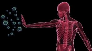 جهاز المناعة في جسم الإنسان