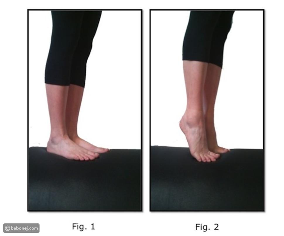 تمرين رفع ربلة الساق (Calf Raises)