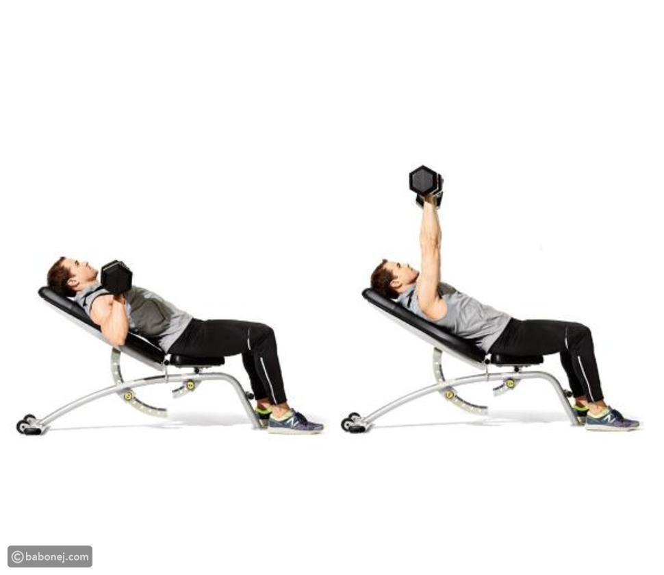 الضغط على المقعد باستخدام الدمبل