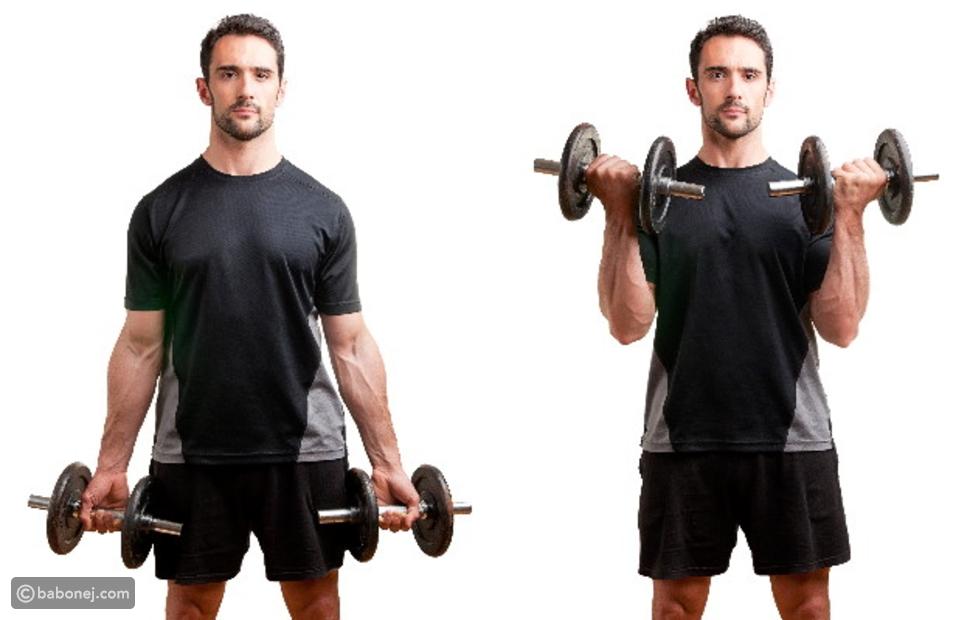 ثني العضلة ذات الرأسين