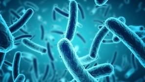 ما هي البكتيريا النافعة وأهميتها للجسم؟