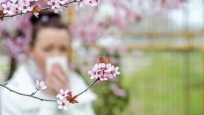 الحساسية: علاجها بالأعشاب والأدوية