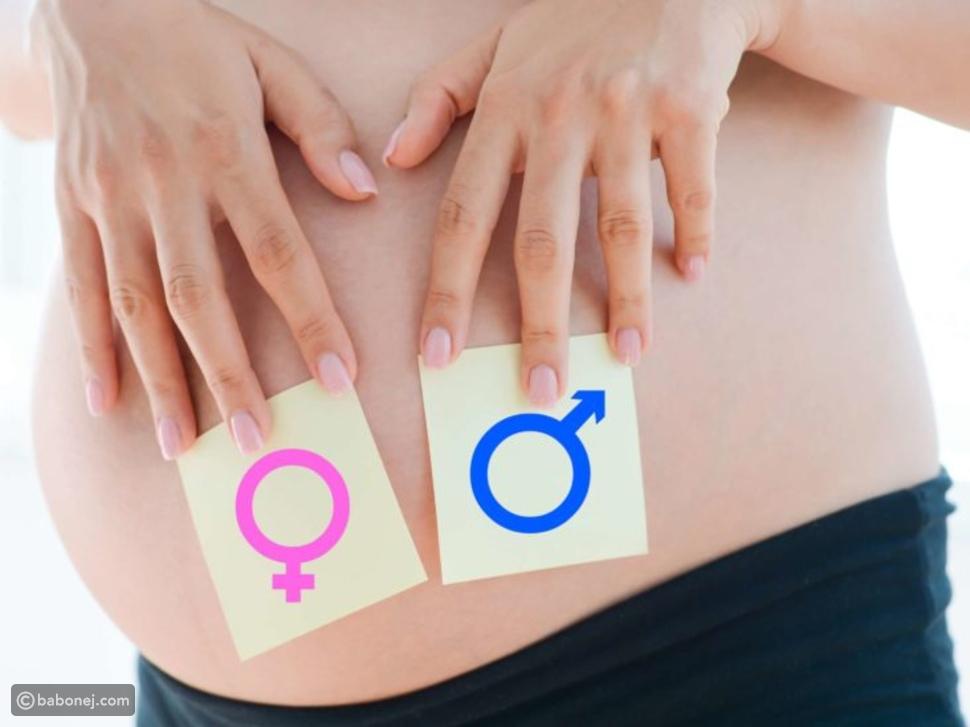 غثيان الحمل وجنس الجنين