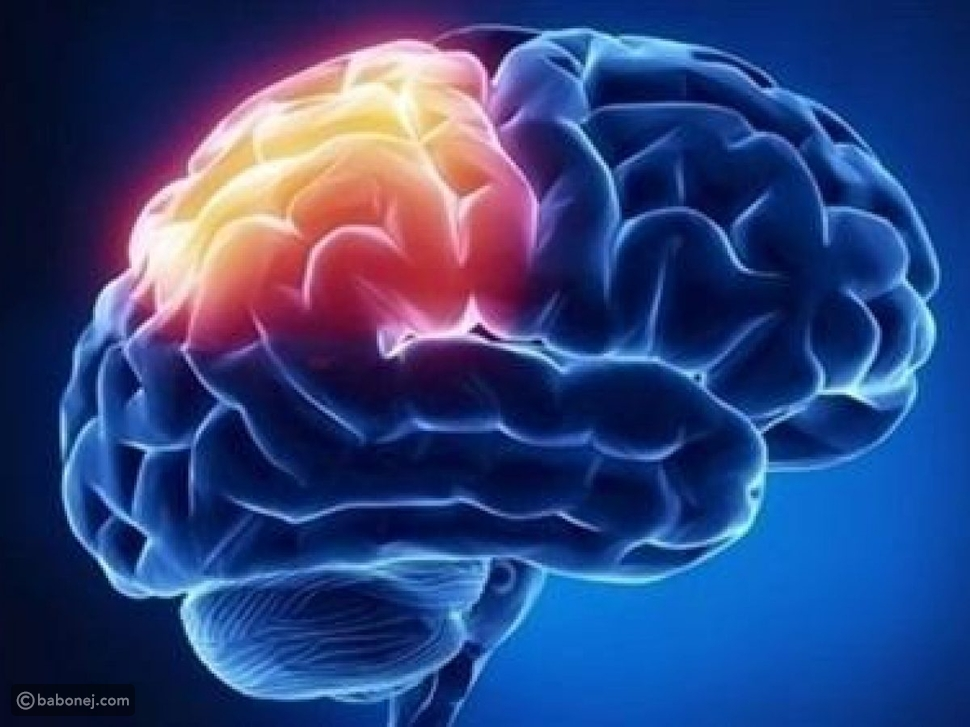 أسباب الجلطة في الدماغ
